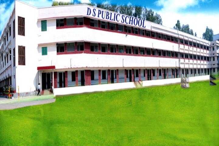 D S Public School-School-View