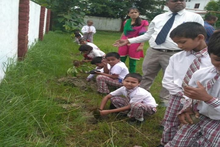 Dawn Washco School-Tree Plantation