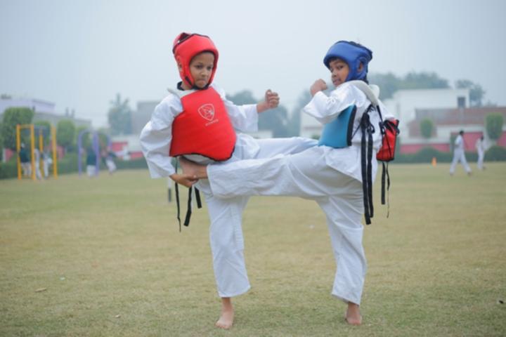 Delhi Public International School-Kick boxing