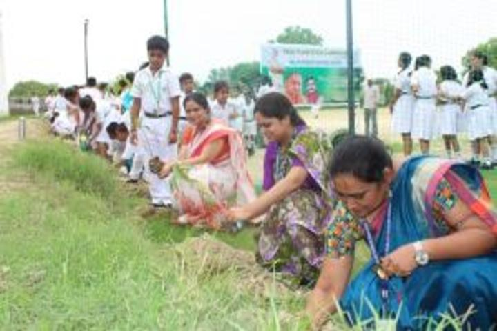 Delhi Public School-Plantation Competition