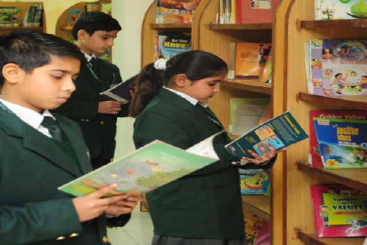 Dps World School-Library