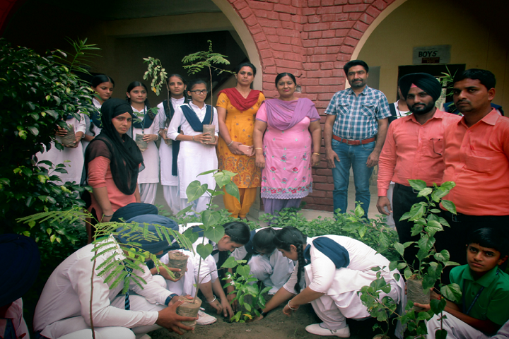 Dr Amrit Lal Isharat Memorial Sun-Others plantation