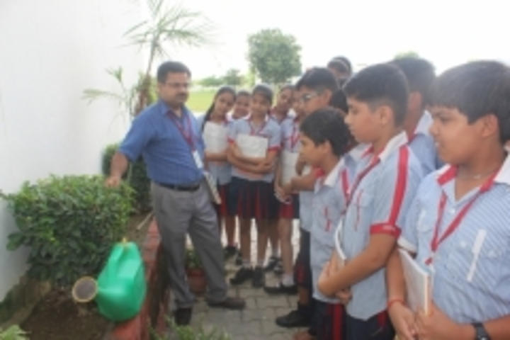 G D Goenka Public School-Interaction with nature