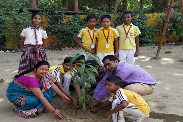Gandhi Memorial School-Plantations