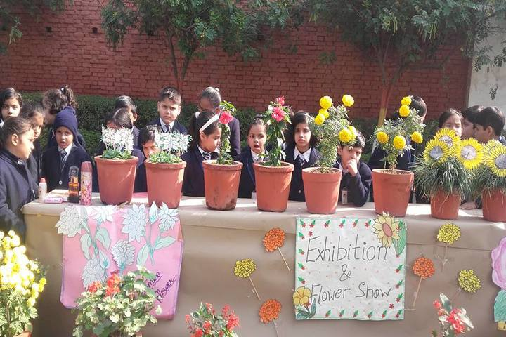 Grain Chamber Public School-Flowers Exhibition