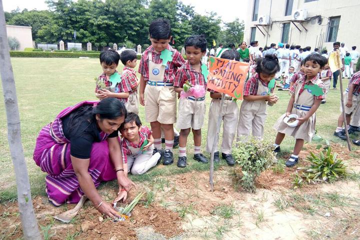 Greater Noida World School-Activity