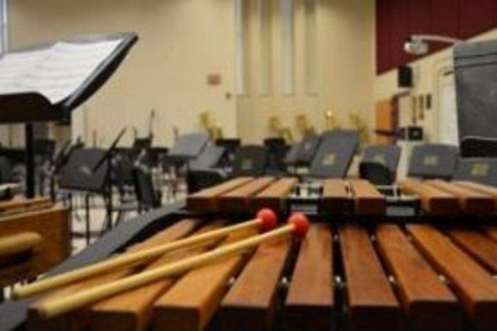 Sky Vision Public School-Music Rooms