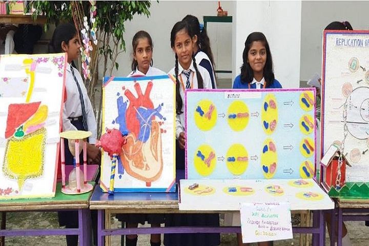 Harihar Singh Public School-Science Exhibition