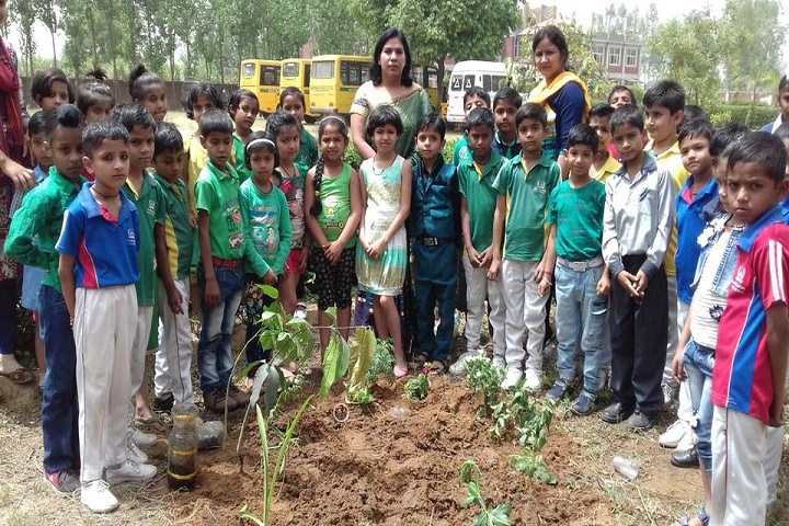 Hastinapur Public School-Others plantation