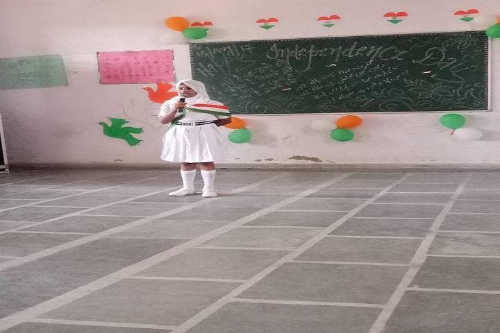 Hi Ness Public School-Events republic day