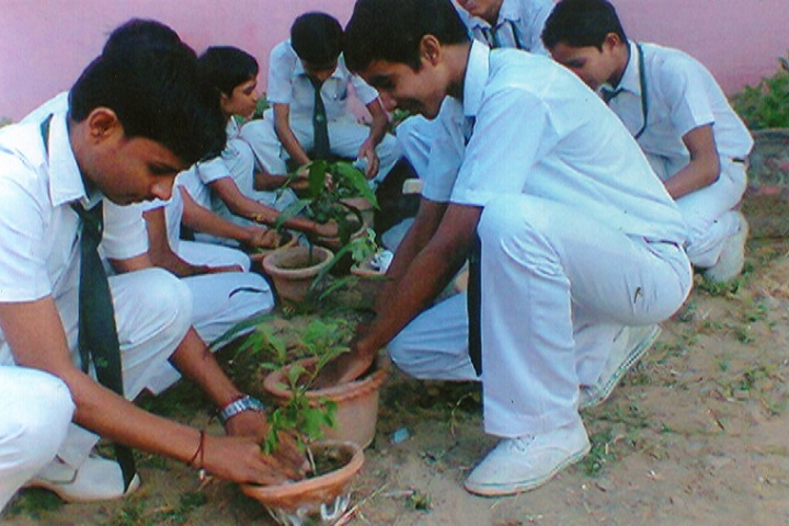 Hindon Public School-Others plantation