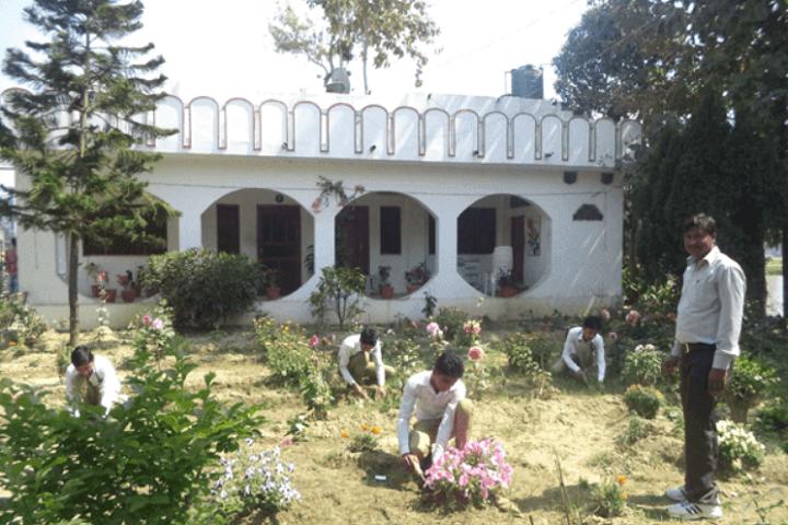 Hira Public School-Tree Plantation