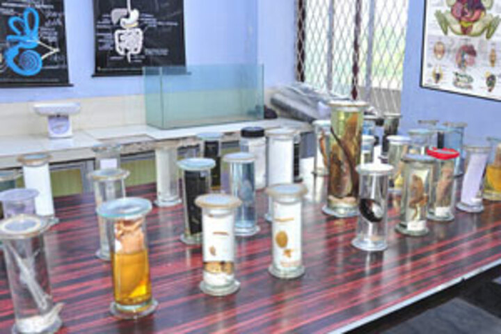 Holy Light Public School-Biology-Lab