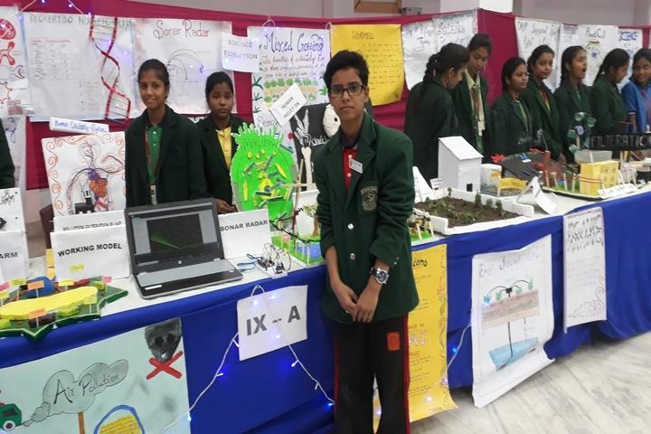 ST Dominic Savios High School-Science Exhibition