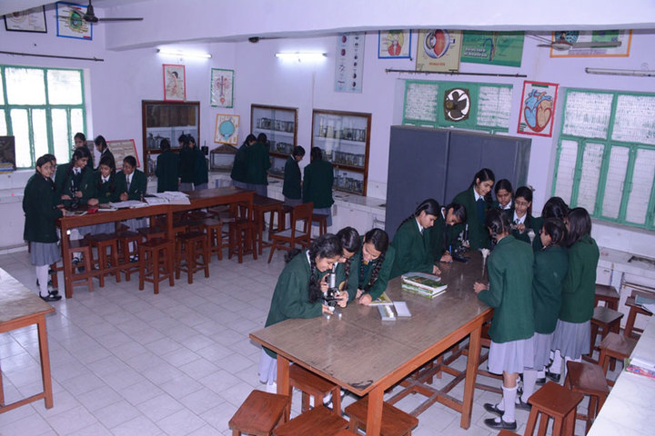 K C M School-Biology Lab