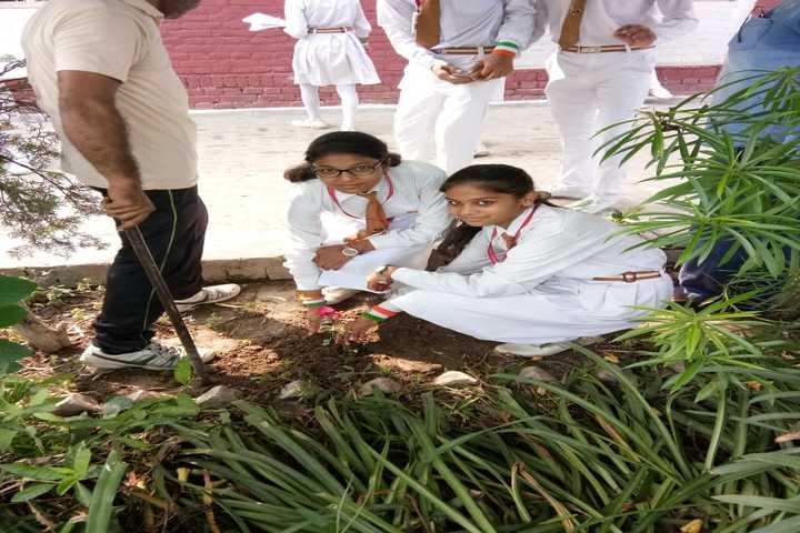 K P Public School-Tree Plantation
