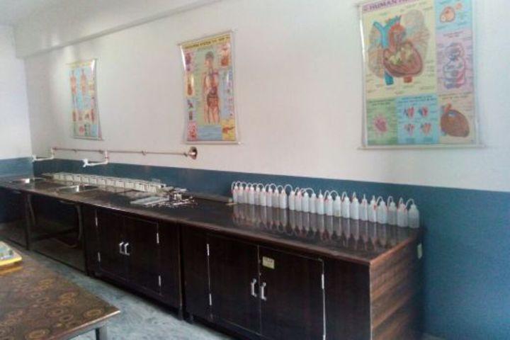 Krishna Public School-Lab