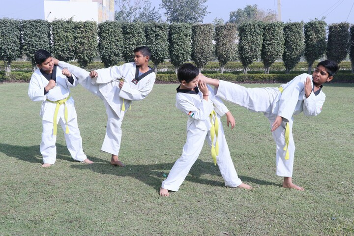 L N Public School-Karate