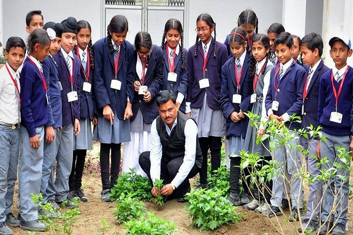 L S P Public School-Tree Plantation