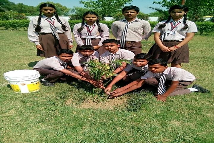 Lohia Academy International School-Tree Plantation