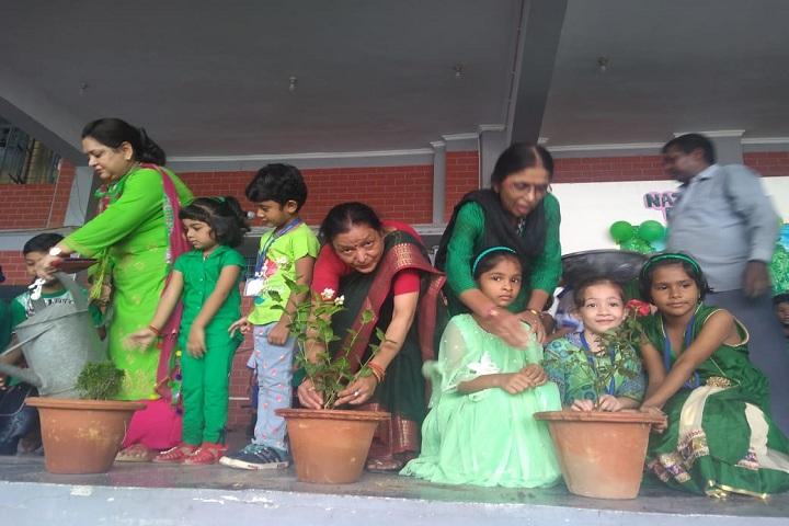 Lucknow Public School-Plantation