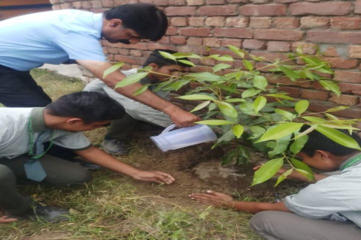 M T S Public School-Tree Plantation