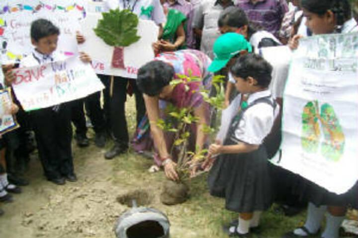 Sunshine Prepratory High School-Tree-Plantation