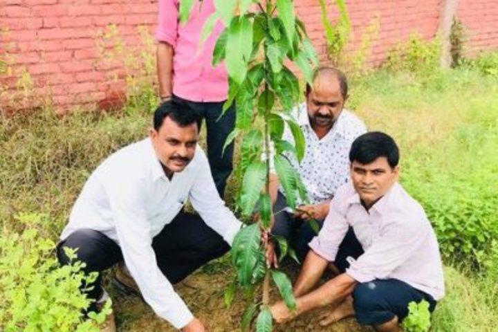 Maa Kaushilya Secondary School-Tree-Plantation