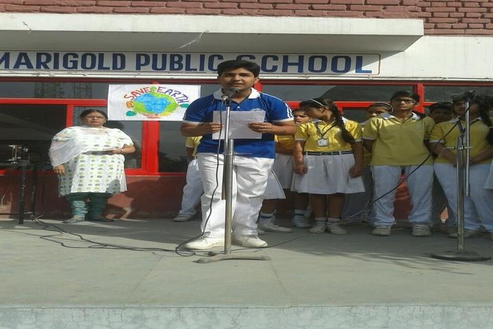 Marigold Public School-Earth day