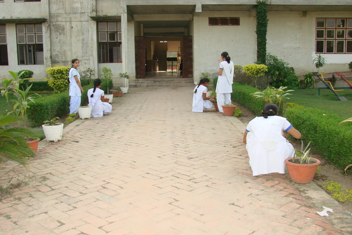 Marwah Modern School-Gardening