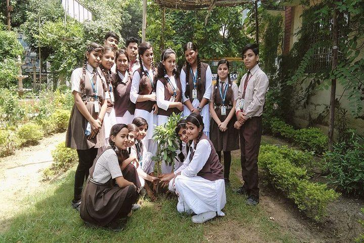 N R Public School-Plantation Day