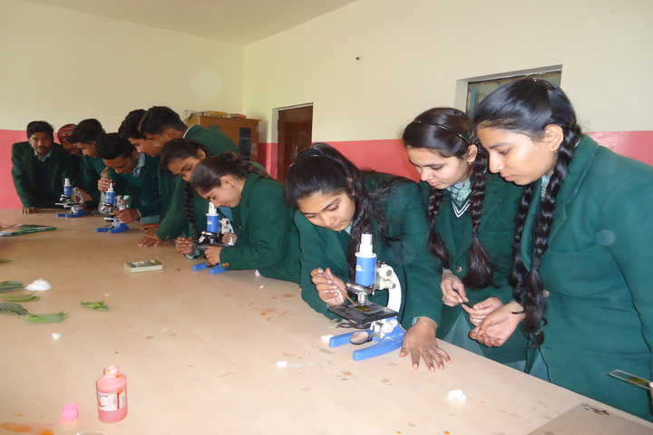 National Public School-Physics Lab
