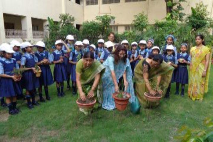 Navayuga Radiance School-Tree Plantation
