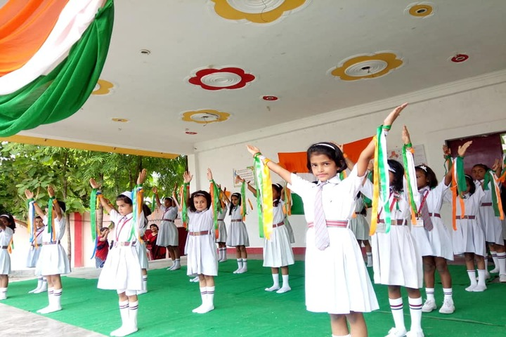 New Public College - Independence day
