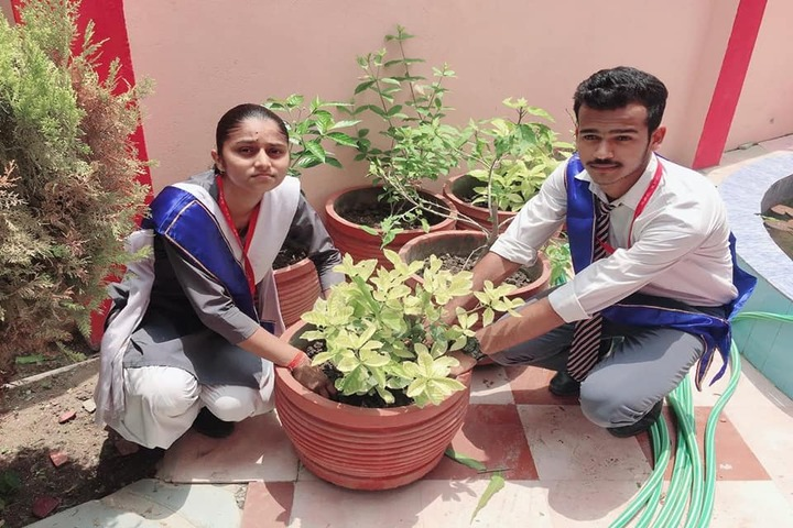 New Public College - Tree planting