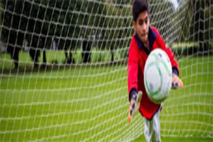R S J  Public School-Sports