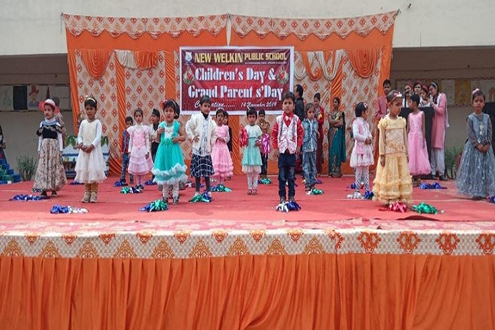 New Welkin Public School-Childrens Day Celebration