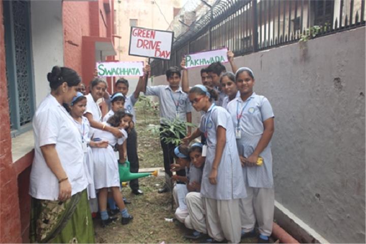Nirmala Convent School-Green School Drive