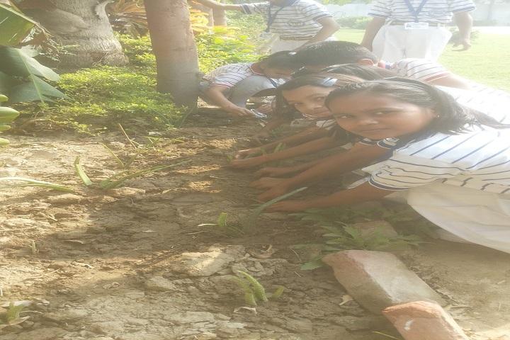 Nyaya Nagar Public School-Plant A Tree