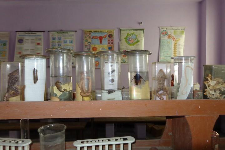 Vidya Niketan Girl High School-Science La
