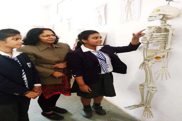 Padamshree N N Mohan Public School-Biology Lab