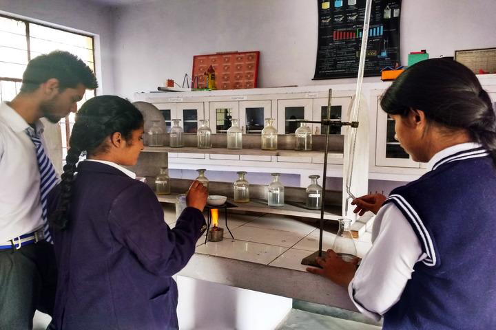 Padamshree N N Mohan Public School-Chemistry Lab
