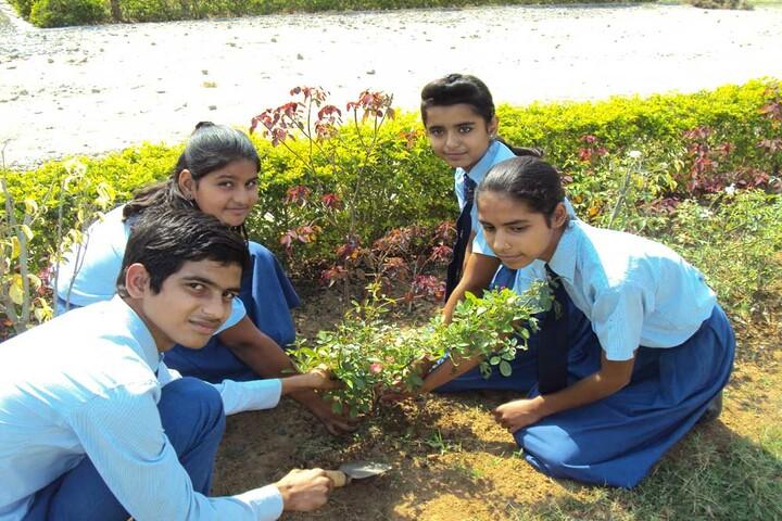Param Public School - Tree planting