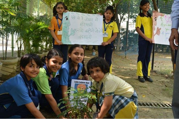 Patanjali Rishikul-Plant A Tree