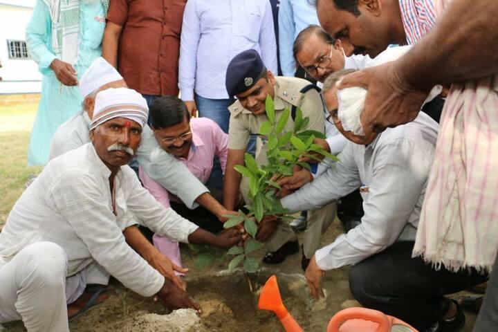Vigyananand Kendriya Vidyalaya-Tree Plantation