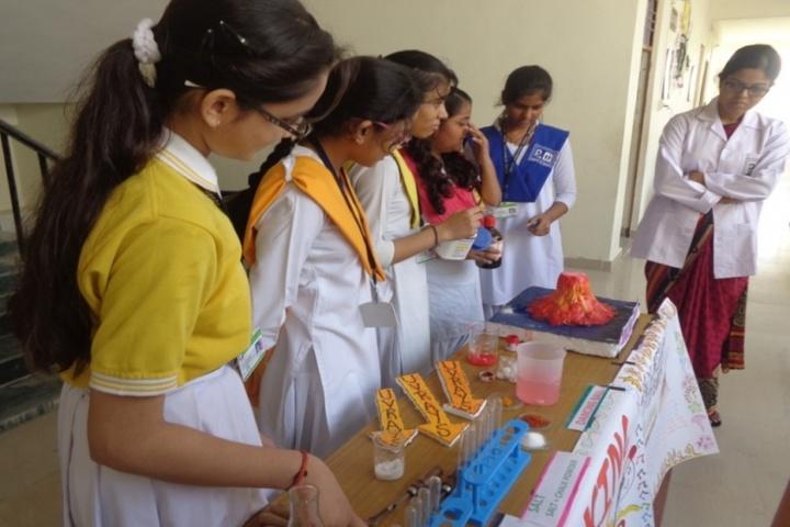 Prasad International School-Science Exhibition