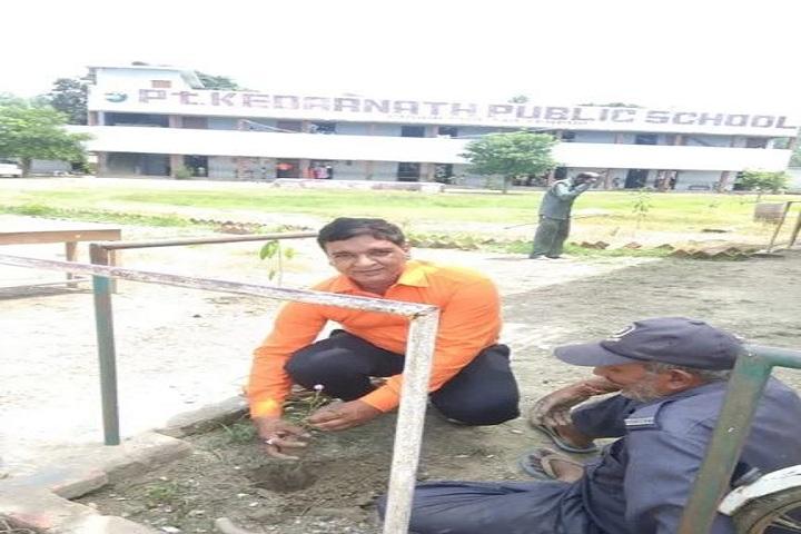 Pt Kedar Nath Public School-Plantation