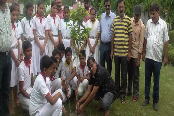 Pt Nagesh Dutt Public School-Plantation