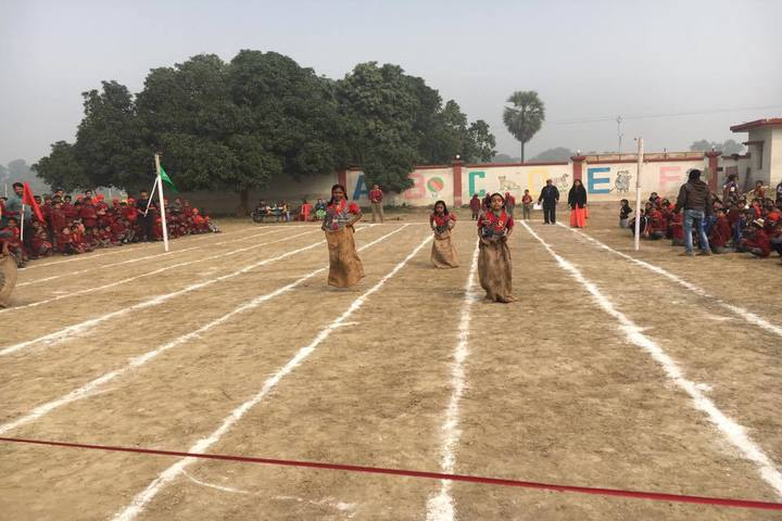 Vivekanand International Public School sports day