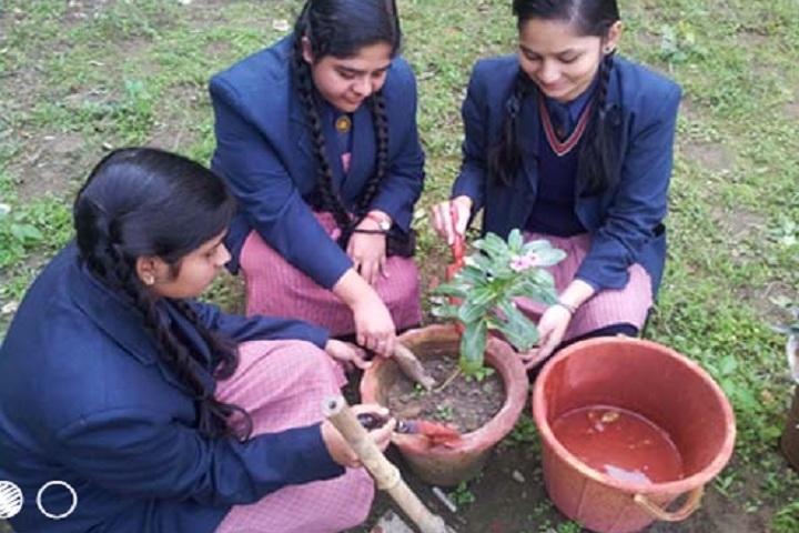 R S D Academy Public School-Gardening